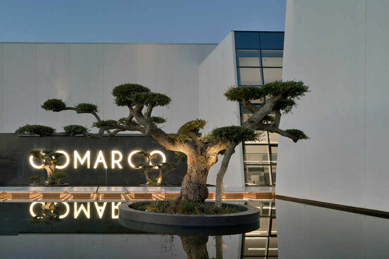 maza construcciones gomarco entrada bonsai